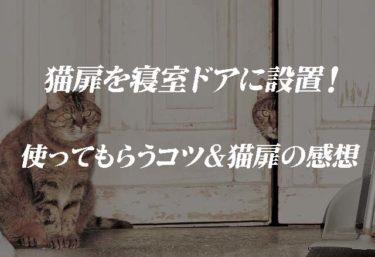猫扉を寝室ドアに設置! 使ってもらうコツ&猫扉の感想