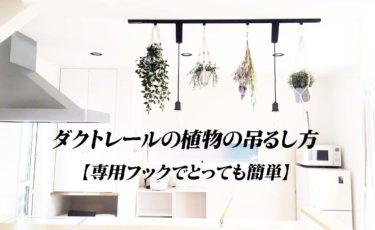 ダクトレールの植物の吊るし方【専用フックでとっても簡単】