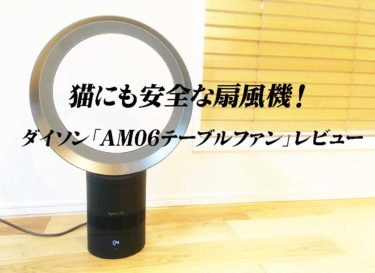 猫にも安全な扇風機!ダイソン「AM06テーブルファン」レビュー